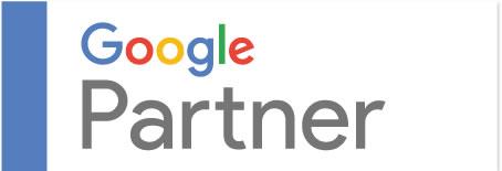 Vleeko Insignia google partners