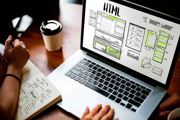 Vleeko Diseño Web Sitios Web