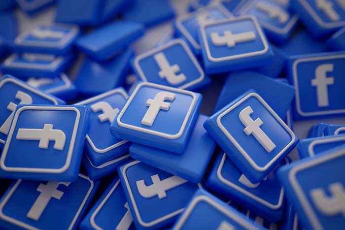 Vleeko Facebook Business